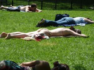 Sunbathing in Washington Square