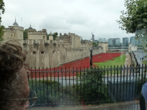 The Tower of London and poppies